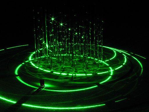 lichtverschijnselen in een naaldbos