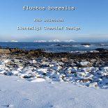 fluctus borealis - 2015